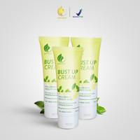 Paket Pembesar Pengencang Payudara TERLARIS Royalty Cosmetics - 3 tube