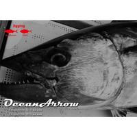 Ripple Fisher Ocean Arrow 5015 Bait Model PE6
