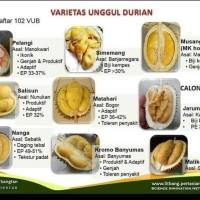 Paket Durian 9