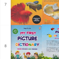 my first picture dictionary - kamus