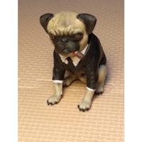 Kitbash 1/6 Scale Pug Dog Enterbay MIB (cs4)