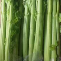 Celery import Celery Stik impor Seledri impor