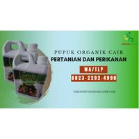 ✅TERBATAS..!! 0823*2292*4990 ✅HARGA pupuk sayur di Semarang