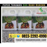✅SPECIAL..!! 0823*2292*4990. JUAL Pupuk Cair untuk padi di Aceh Jaya