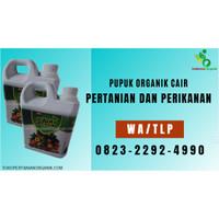 ✅PENAWARAN..!! 0823*2292*4990 ✅AGEN pupuk sayur di Jawa Tengah