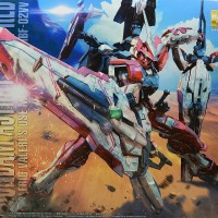 Bandai MG Gundam Astray Turn Red