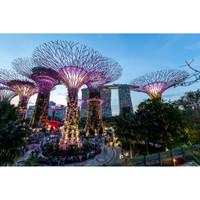 Tiket Masuk Garden By The Bay Singapore 2 Dome (Child)