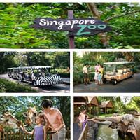 Tiket Masuk Singapore Zoo with TRAM RIDE (Adult)