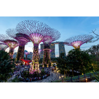 Tiket Masuk Garden By The Bay 2 Dome Singapore (Adult)