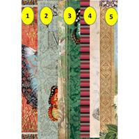 Kertas Scrapbook - Butterfly A1-5_DP19 Design