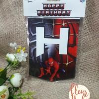BUNTING FLAG HAPPY BIRTHDAY spiderman