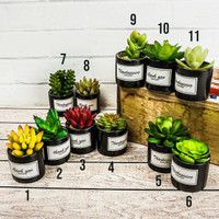 Pajangan Pot Black Kaktus Bunga Artificial / Home Decoration Unik