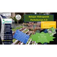 Pelatihan / Workshop / Pengenalan Hidroponik di Surabaya