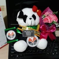 Boneka wisuda panda lengkap 27cm