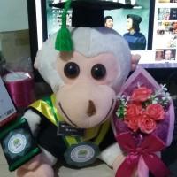 Boneka wisuda bekantan + buket bunga 27cm