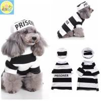 baju anjing dan baju kucing kostum hewan PET3064