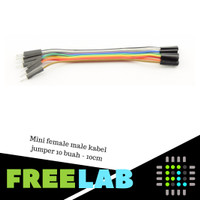 Mini female male kabel jumper 10 buah - 10cm