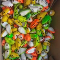 cuci gudang bodi/body cangkang soft frog murah