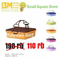Rantang Susun 1 Bisa Kukus / Small Square and Store Twin Tulipware