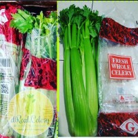 Seledri stik / celery stick import Australia 1 kg grade A