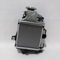 Radiator Vario 125 Esp, Vario 150 Esp 19100-K60-B00 Genuine Astra