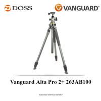 Vanguard Alta Pro 2+ 263AB100 Tripod Kit with Alta BH-100 Ball Head