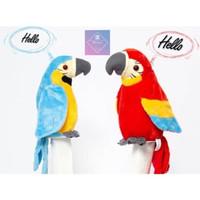 BONEKA TALKING PARROT Burung Beo Yang Bisa Mengikut Kita Bicara