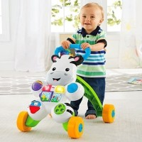 Fisher Price Infant Push Baby Zebra Walker / Lion Walker