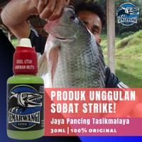 Essen Ikan Nila Liar Paling Ampuh - Semarwangi
