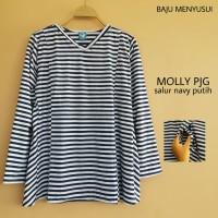 Baju Hamil Atasan Lengan Panjang Blouse Hamil Dan Menyusui Molly