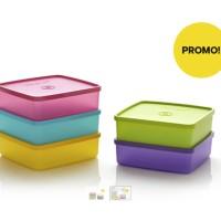 Large Square Away (5) Toples Tupperware Plus Free