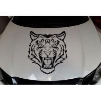 Stiker Kap Mesin Mobil Stiker Harimau A10