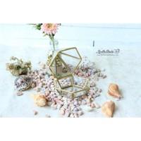 Kotak Perhiasan   Ringbox Terarium Mini Krucut S6 UK 12x12x10