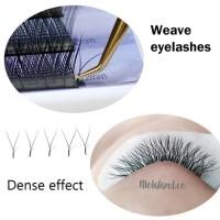 lagee Y lash eyelash extension sambung bulumata