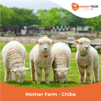 Tiket Mother Farm - Chiba (DEWASA)