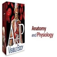 Anatomy & Physiology V1.5.04 Windows