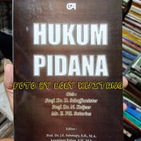 HUKUM PIDANA by Schaffmeister