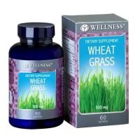 WELLNESS WHEAT GRASS 500 MG 500MG ANTIOKSIDAN JANTUNG OTAK 60 TABLETS