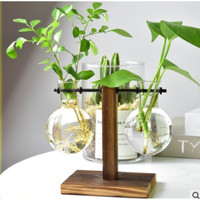 🌟 Glass Vase Wooden Hydroponic Vase Nordic Style Creative 🌟