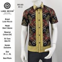Baju Batik Pria | Batik Premium | Batik Pria Terbaru Luigi Riccio