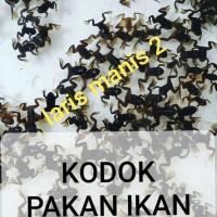 Harga Ikan Arwana Katalog.or.id