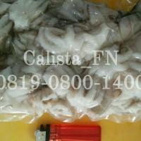 Baby Gurita Mentah 1 Kg whole clean