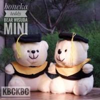 Boneka Teddy Bear wisuda mini