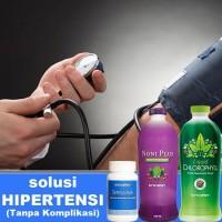 Obat Hipertensi Herbal Menjaga Tekanan Darah Kardiovaskular