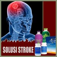 Paket Obat Stroke Pasca Rawat RS 100% HERBAL