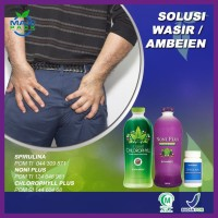 Maxi Pack Herbal Obat Wasir Ambeien Akibat Sembelit Kronis Karena