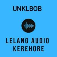 LINK REKBER EARPHONE LELANG AUDIO KEREHORE