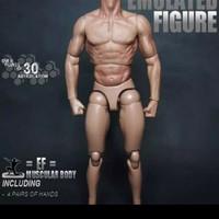 """COOMODEL BD010 1//6 Muscle Male Body Model Flexible Fit 12/"""" Figure Head Sculpt"""
