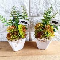 Jual Bunga Kaktus Plastik Di Kab Sidoarjo Harga Terbaru
