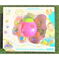2012 6A Mainan Anak Lady Bug / Mainan Edukatif / Fun Toy / Impor